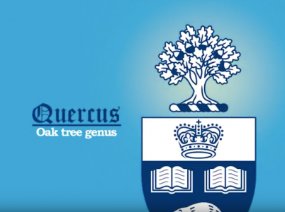 Image result for quercus u of t